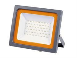 Прожектор_светодиодный_50_Вт_PFLSC_6500К,_IP65,_200240В,_JAZZWAY_4250Лм,_холодный_белый_свет_5001435