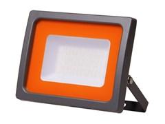 Прожектор_светодиодный_20_Вт_PFLSC_6500К,_IP65,_160260В,_JAZZWAY_1710Лм,_холодный_белый_свет,_МАТОВОЕ_СТЕКЛО_5004887